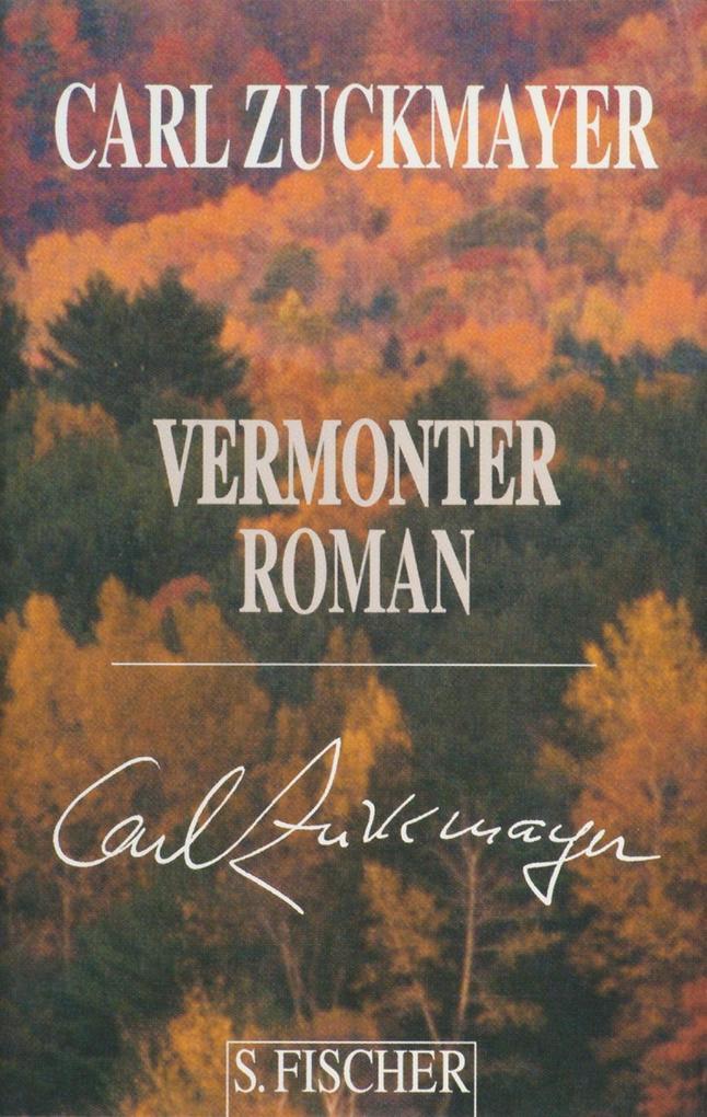 Vermonter Roman als Buch
