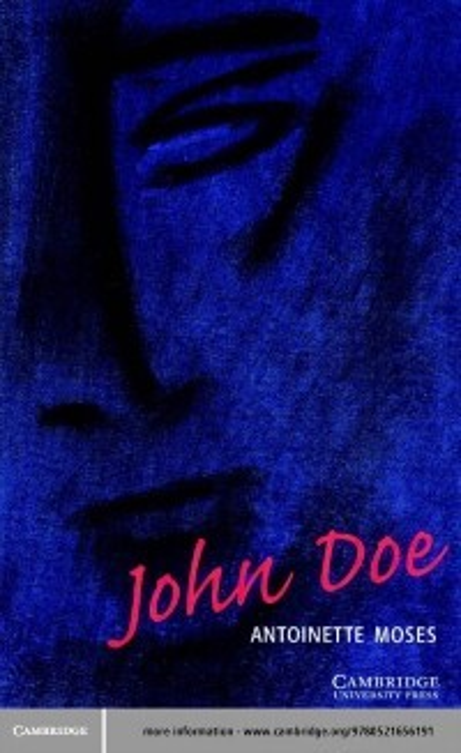 John Doe Level 1 als eBook