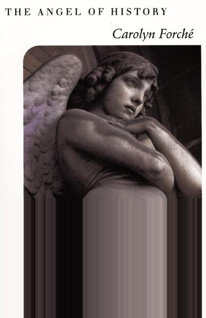 The Angel of History als Taschenbuch