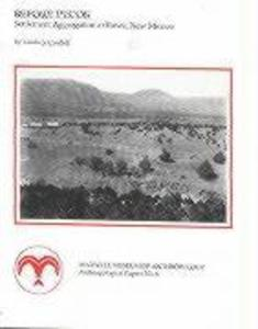 Before Pecos: Settlement Aggregation at Rowe, New Mexico als Taschenbuch