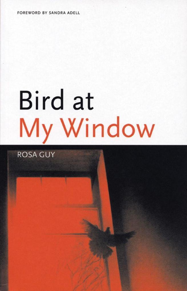 Bird at My Window als Taschenbuch