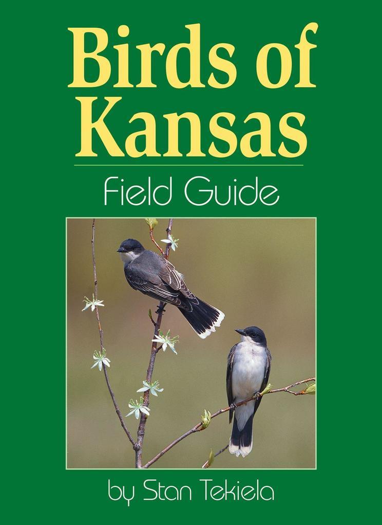 Birds of Kansas Field Guide als Taschenbuch
