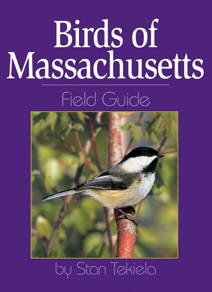 Birds of Massachusetts Field Guide als Taschenbuch