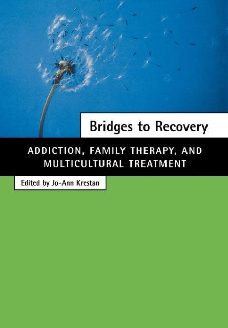 Bridges to Recovery als Buch