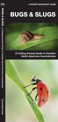 Bugs & Slugs: An Introduction to Familiar North American Invertebrates als Spielwaren