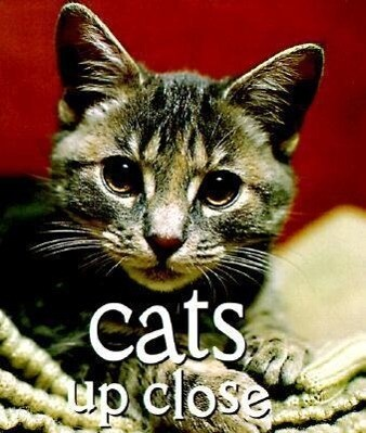 Cats Up Close: The Guide to Vintage Patterns and Clothing als Buch