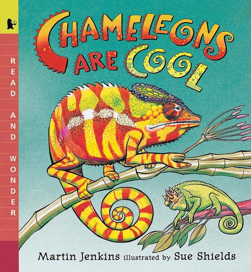 Chameleons Are Cool: Read and Wonder als Taschenbuch