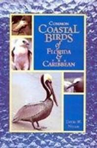 Common Coastal Birds of Florida & the Caribbean als Taschenbuch