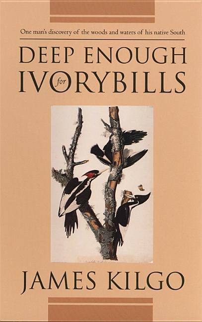 Deep Enough for Ivorybills als Taschenbuch