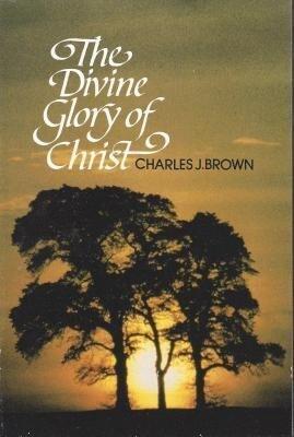 Divine Glory of Christ: als Taschenbuch