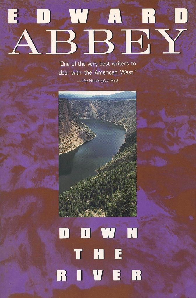 Down the River als Taschenbuch
