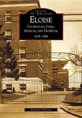 Eloise: Poorhouse, Farm, Asylum and Hospital 1839-1984 als Taschenbuch
