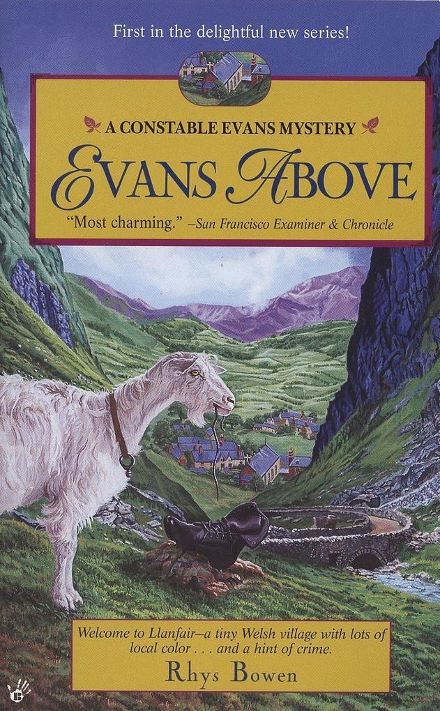 Evans Above als Taschenbuch