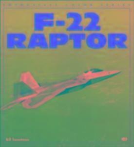 F-22 Raptor als Taschenbuch