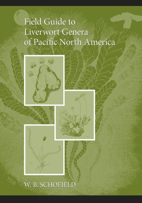 Field Guide to Liverwort Genera of Pacific North America als Taschenbuch