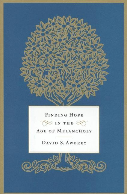 Finding Hope in the Age of Melancholy als Buch