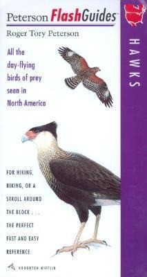 Hawks: All the Day-Flying Birds of Prey Seen in North America als Buch