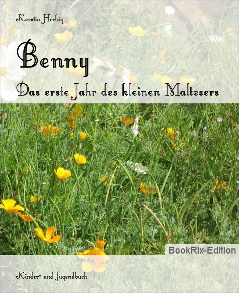 Benny als eBook