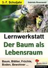 Lernwerkstatt Der Baum als Lebensraum