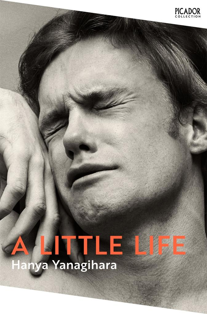 A Little Life als eBook