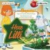 Hexe Lilli 09: Das verrückte Roboterhaus & Das Geheimnis der verschwundenen Bienen