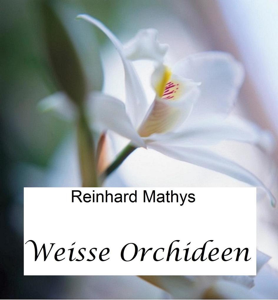 Weisse Orchideen als eBook