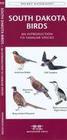Rhode Island Birds: A Folding Pocket Guide to Familiar Species