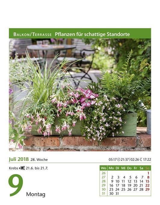 Mein Garten 2018 (kalender), Ulrich Thimm Pflanzen Fur Den Balkon Hilfreiche Gartentipps