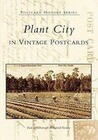 Plant City, Florida in Vintage Postcards