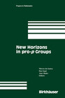 New Horizons in pro-p Groups