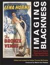 Imaging Blackness: Race and Racial Representation in Film Poster Art