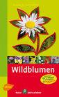 Steinbachs Naturführer Wildblumen