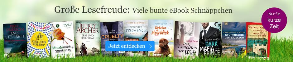 Große Lesefreude - viele bunte eBook Schnäppchen