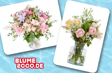 Blume 2000 Mini-Abo