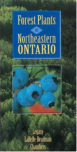 Forest Plants of Northeastern Ontario als Taschenbuch