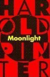 Moonlight als Taschenbuch