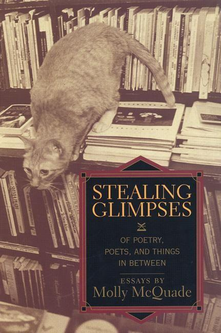 Stealing Glimpses: Of Poetry, Poets, and Things in Between / Essays als Taschenbuch