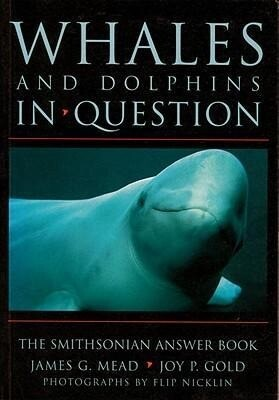 Whales and Dolphins in Question: Whales and Dolphins in Question als Taschenbuch