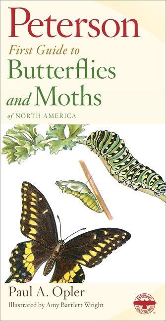 Peterson First Guide to Butterflies and Moths als Taschenbuch