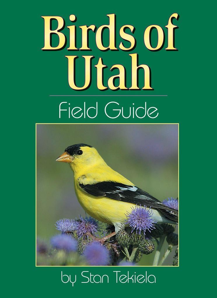 Birds of Utah Field Guide als Taschenbuch