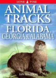 Animal Tracks of Florida, Georgia, Alabama als Taschenbuch