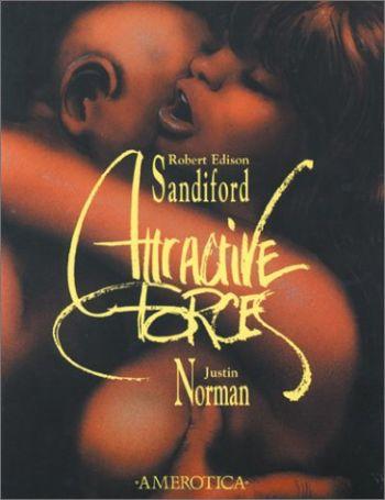 Attractive Forces als Taschenbuch