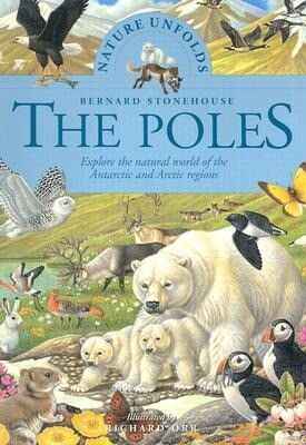 The Poles als Taschenbuch
