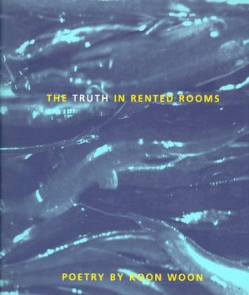 The Truth in Rented Rooms als Buch