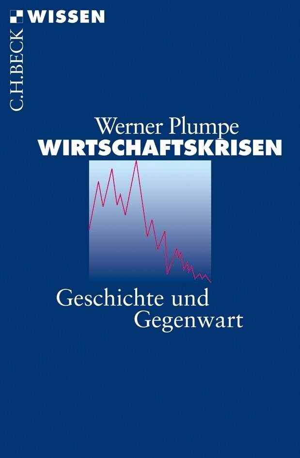 Wirtschaftskrisen als Taschenbuch