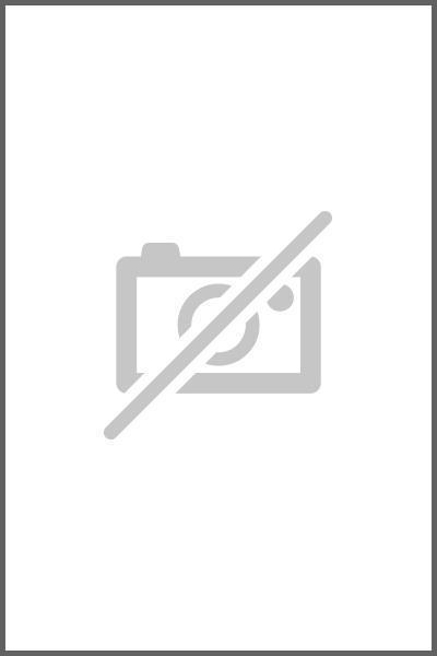 Logistik-Wörterbuch. Dictionary of Logistics als eBook