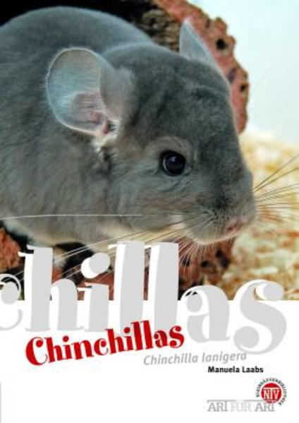 Chinchillas als Buch
