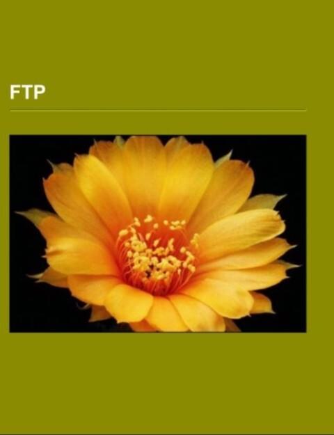 FTP als Taschenbuch von