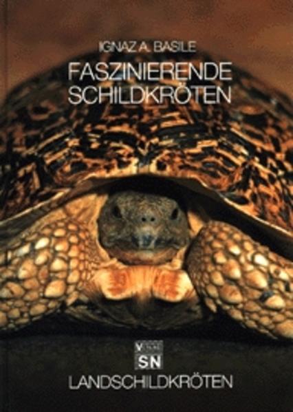 Faszinierende Schildkröten. Landschildkröten als Buch