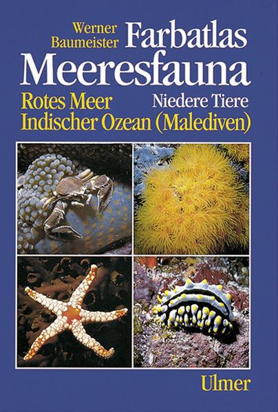 Farbatlas Meeresfauna als Buch